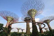 Spectaris Verband der Hightech- Industrie EU Singapur Handelsabkommen Investitionsabkommen